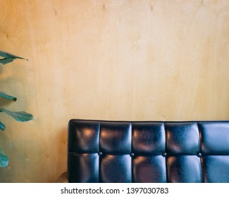 Yellow brown wooden wall and a black couch and green leaves of small tree.