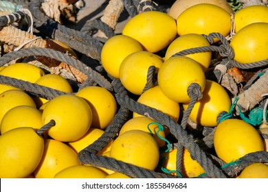 Yellow buoys and ropes in a dock
