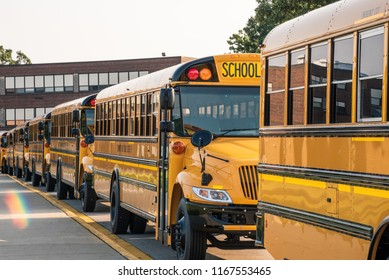yellow buses lined up in front of school ready for first day
