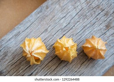 Yellow cape gooseberry fruit on wood texture.look like egg.