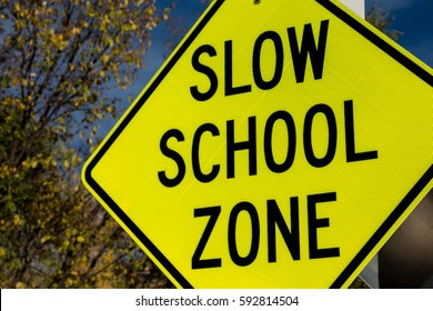 Yellow caution sign that says Slow School Zone against autumn tree and sky