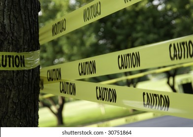 Yellow caution tape by tree trunk