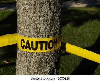 Yellow caution tape wrapped around a tree trunk