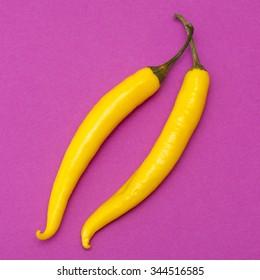yellow  chili pepper on bright magenta background