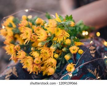 Yellow Chrysanthemum flower in autumn Garden with leaves
