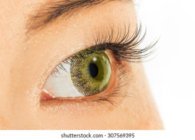 Yellow colored contact lenses and eyelashes extension