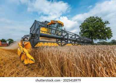 A yellow combine harvests wheat on a field in germany.