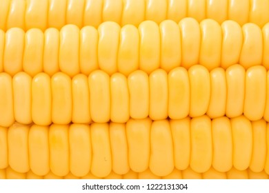 Yellow corn background close up