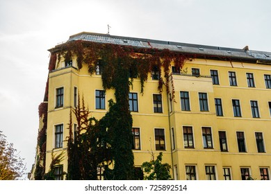 yellow corner building with ivy in autumn