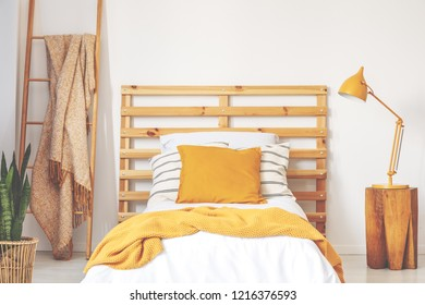 Yellow cushions on wooden bed with blanket in bedroom interior with lamp, plant and ladder. Real photo