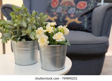 Yellow Damask Roses or Rosa Damascena Flowers with Green Plants in A Living Room for Home and Office Decoration without The Care.