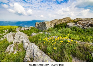 yellow dandelions in the grass among the huge rocks on hillside in high mountains