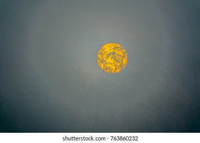 The yellow disk of the sun peaks in the misty morning mist