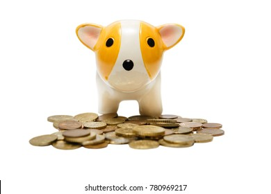 Yellow dog year. Ceramic dog bank with coins isolated on white background.