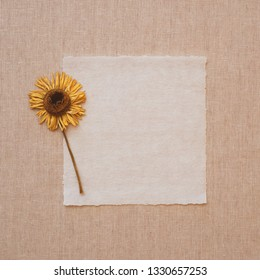 Yellow Dried Flower on Old Parchment Paper Note Card on Beige Linen Table Cloth.  It's blank for copy, text or your words or sentiments.  Square crop with looking down view