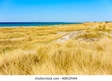 Yellow dry grass and sand dominates this lovely stretch of beach in Falsterbo, Sweden. The bridge to Denmark is seen in on the horizon.