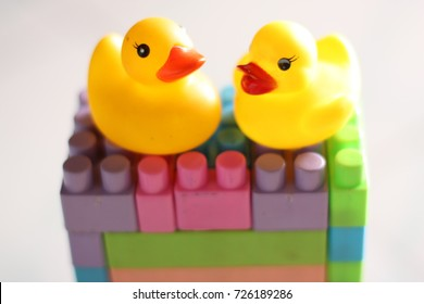 yellow duck toys.