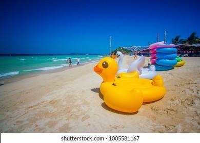 Yellow duckling at the beautiful beach. Koh Larn, Chonburi