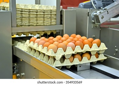 yellow eggs in cardboard container on the conveyor, industrial processing details