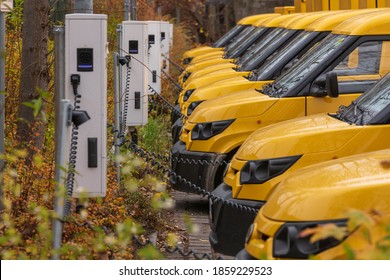 Yellow electric vehicles at the charging station
