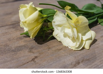 yellow eustoma flowers (prairie gentian, lisianthus) on wooden background. Beautiful floral mockup. Space for your text.