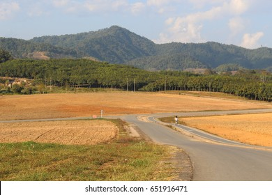 Yellow farm road and bike and mountain