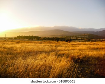 Yellow field and mountain. Sunset landscape. Dry grass field.