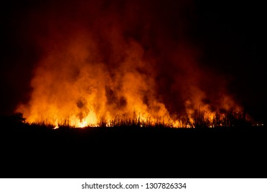 Yellow fires with smokes around an agricultural field at night