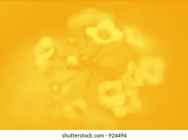 yellow flower blur for backgrounds
