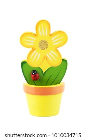 Yellow flower in a yellow flowerpot isolated on white. Wooden decoration.