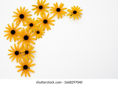 Yellow flower frame on white background.