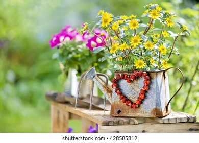 yellow flower in a watering can with dried red berries heart
