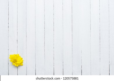yellow flower, white wood background