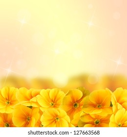 Yellow flowers with bokeh. Background