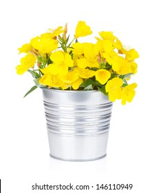 Flower bucket images stock photos vectors shutterstock yellow flowers in bucket isolated on white background mightylinksfo