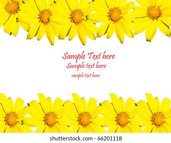Yellow flowers frame with space for your text