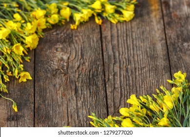yellow flowers are framed on a wooden background, beautiful spring and festive background.