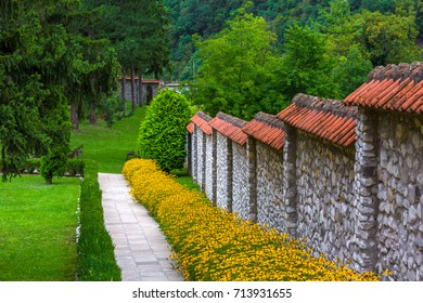 Yellow flowers grow along the stone fence and a walking path of the monastery. The patio of the Temple Trocrkva, Valjevo, Serbia.