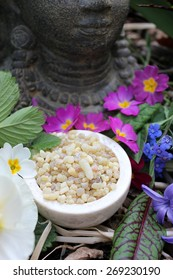Yellow Frank Incense drops (olibanum gummi from Ethiopia) in a stone bowl ritual offering to the god buddha with different spring flowers and leaves (primrose, daffodil, blood sorrel, ...)