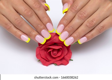 yellow french manicure, sparkles on short square nails with a red rose in hands close-up on a white background