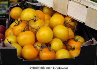 Yellow fresh tomatoes on the market