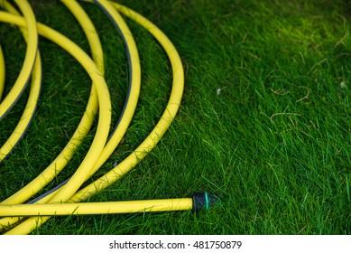 Yellow garden hose pipe