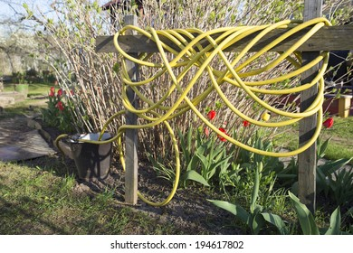 Yellow garden hose reeled up on a fence