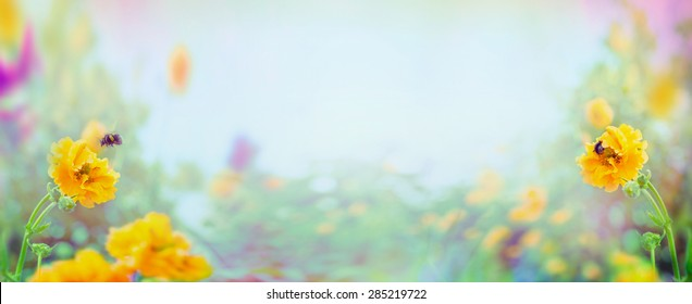 Yellow Geum flowers and bumblebee on blurred summer garden or park background, banner for website