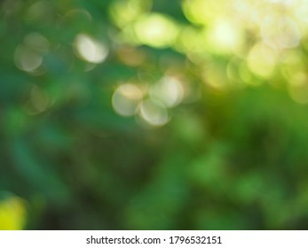 Yellow and green bokeh background with bright corner.