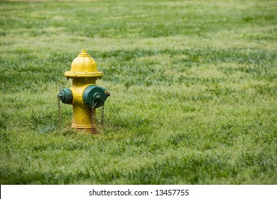 A yellow and green fire hydrant on a grass lawn.