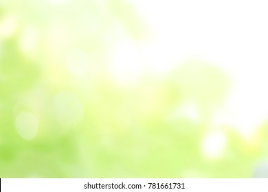 yellow and green light bokeh blurred backgrounds, green and yellow blur background texture