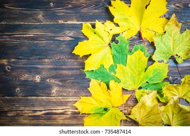 yellow and green maple leaves on a wooden table