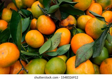 yellow and green tangerines with leaves collected in a bag