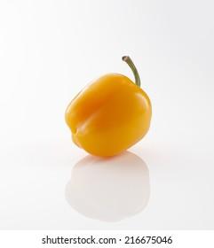 Yellow Habanero Pepper